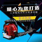 FX-CXJ背负式汽油吹雪机 富兴道路吹风灭火机价格