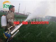 一机多用弥雾机 多功能手持式烟雾机价格