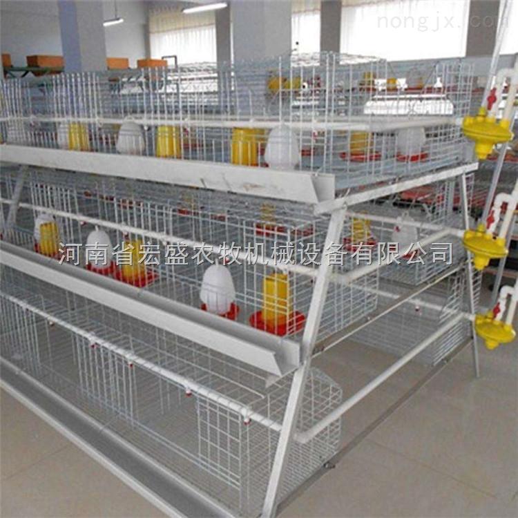 河南省宏盛定做各种育雏笼厂家直销