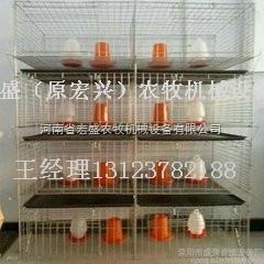 河南省宏盛专业定做育雏笼各种小鸡笼子批发直销