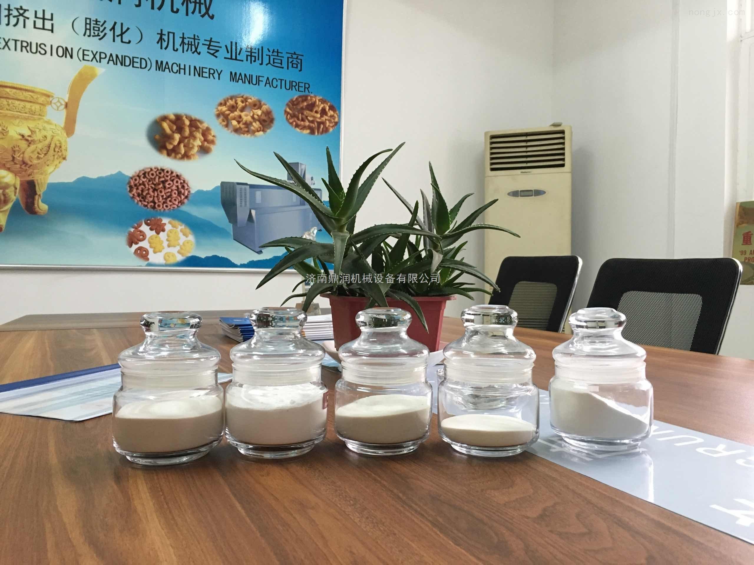 高产量变性淀粉生产设备
