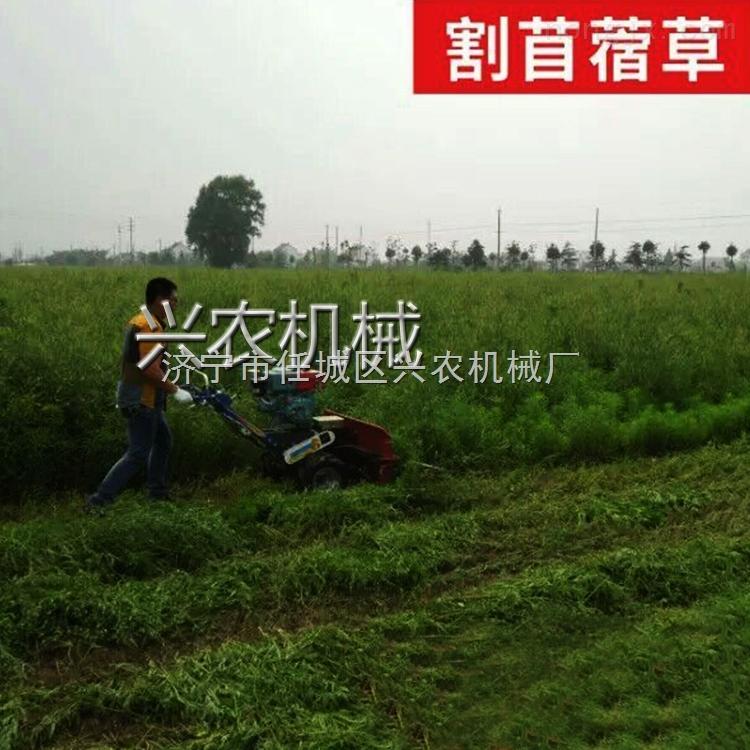 小型玉米割曬機 農業家用玉米收割機視頻