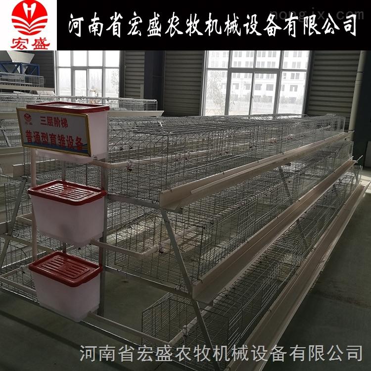 批发自动化养鸡设备阶梯式蛋鸡育雏笼热镀锌