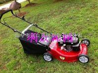 园林剪草机 汽油手推修剪机 灌木割灌机
