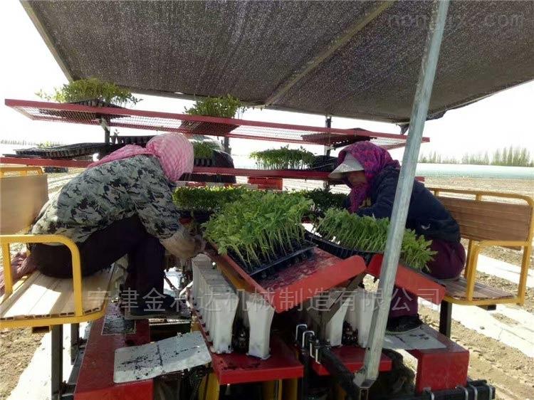 厂家直销订做质量好番茄移栽机田耐尔