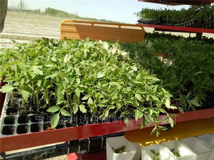 玉米移栽機暢銷優質多行種植機