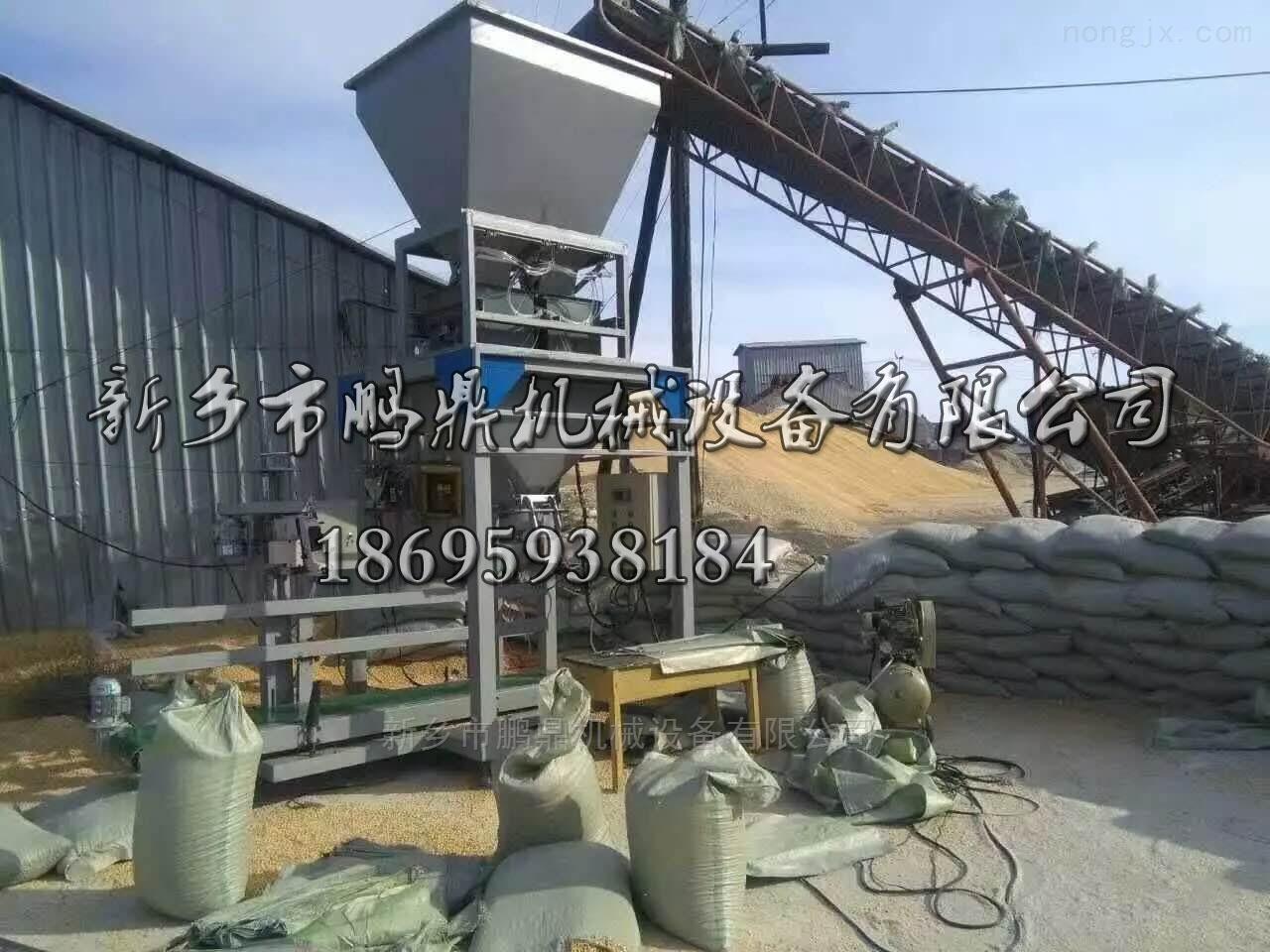 小麦自动定量称包装机 玉米打包灌装机
