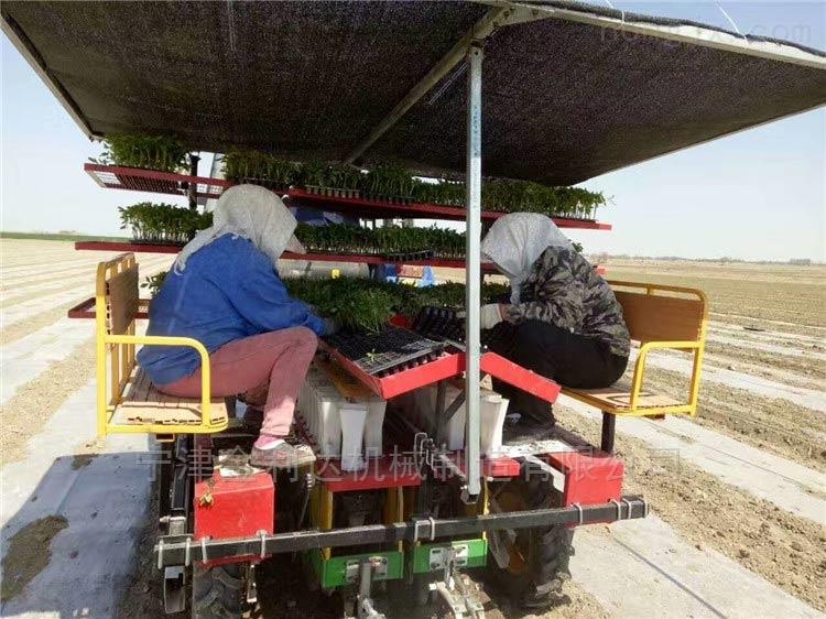 生產率高功能強勁玉米移栽機寧津田耐爾