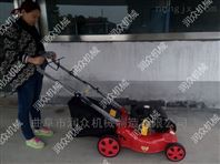 别墅自走草坪机 自动清理修剪机 汽油割草机