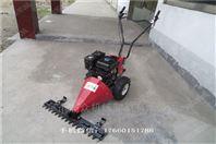 草坪剪草机型号 动力足汽油草坪机