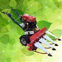 rxjx-sgj四轮150型荆芥割晒机 油菜收割机的视频