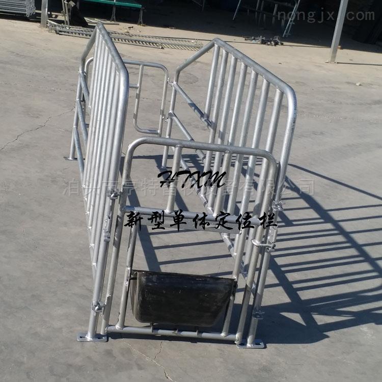 厂家直销养猪设备母猪定位栏育肥公猪栏价格