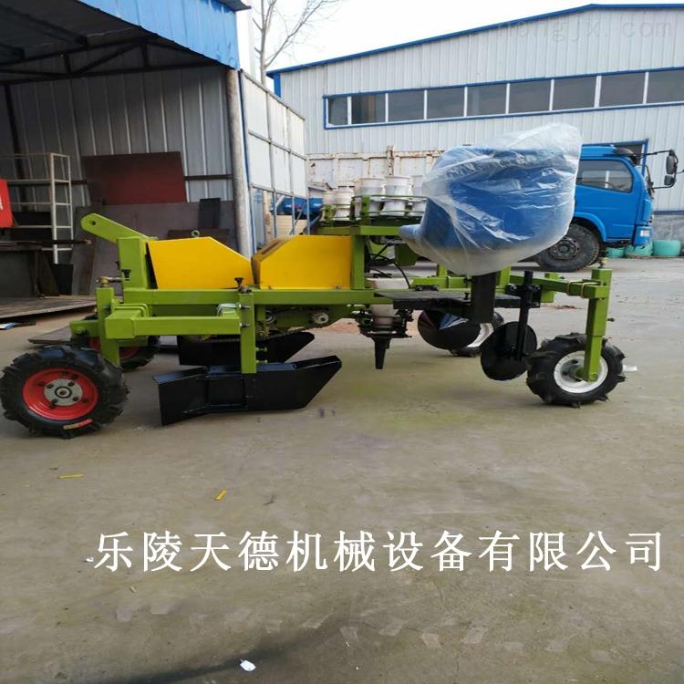 2ZQ-新款多功能辣椒移栽机 省时省力 移栽效率高