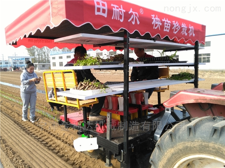 售后服务完善一机多用宁津田耐尔番茄移栽机