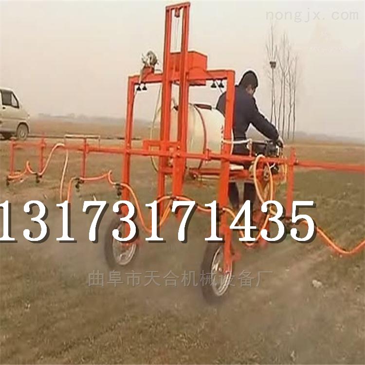 小型园林打药车多功能水旱田用喷药机