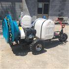 JX-DY汽油杀虫消毒机价格 果园喷雾打药车