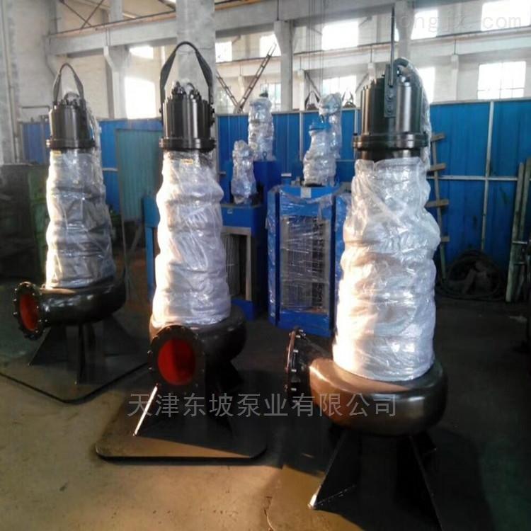 潜水轴流泵安装形式及尺寸