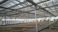 农用温室大棚生产建造设计-强骏温室