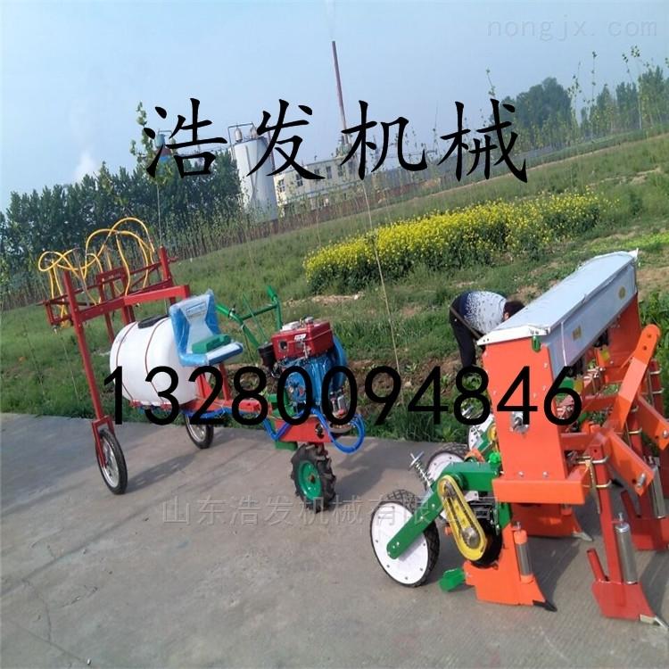 手扶土豆施肥精播机直销 新疆牧草种植机