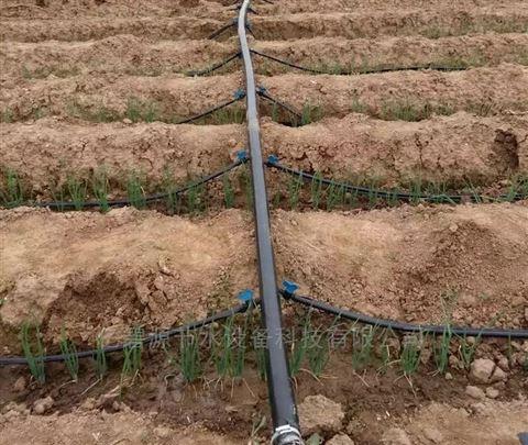 安徽大棚滴灌带、大棚蔬菜滴灌、安徽微喷带