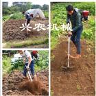 nwjx-2小型背负式汽油松土机 轻便菜园除草机