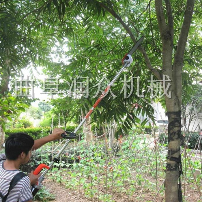 果树修枝用汽油高枝锯 手持方便园林修剪机