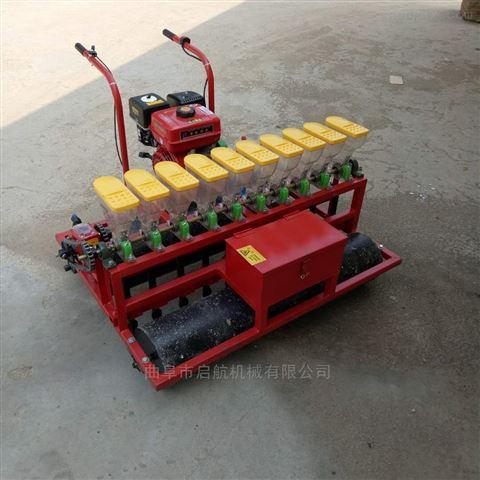 汽油動力蘿卜點播機 黃芪精播機 藥材種植機