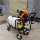 JX-DY四轮轻便手推打药机 高压泵汽油喷雾器