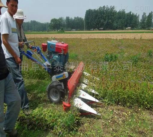 农用水稻小麦收割机 芦苇秸秆割倒机