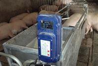 母猪饲喂器|蚌埠自动母猪喂养设备齐全