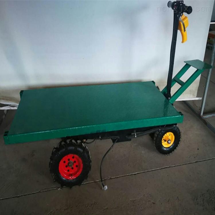 四轮小推车 仓库大棚蔬菜搬运车 电动平板车