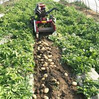 多种宽幅土豆杀秧收获机
