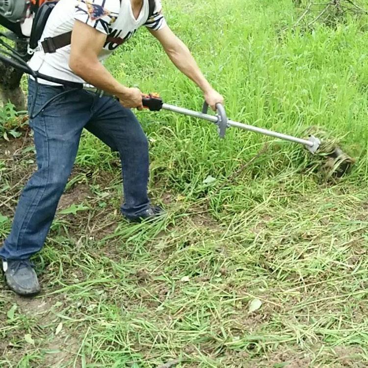 小型除草机 优质牧草割草机