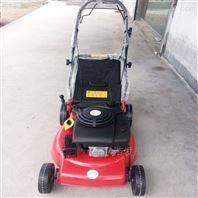 多功能手推草坪机 绿化修整汽油草坪修剪机