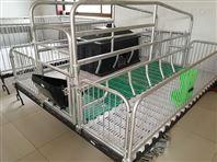 雙體母豬產床結構簡單