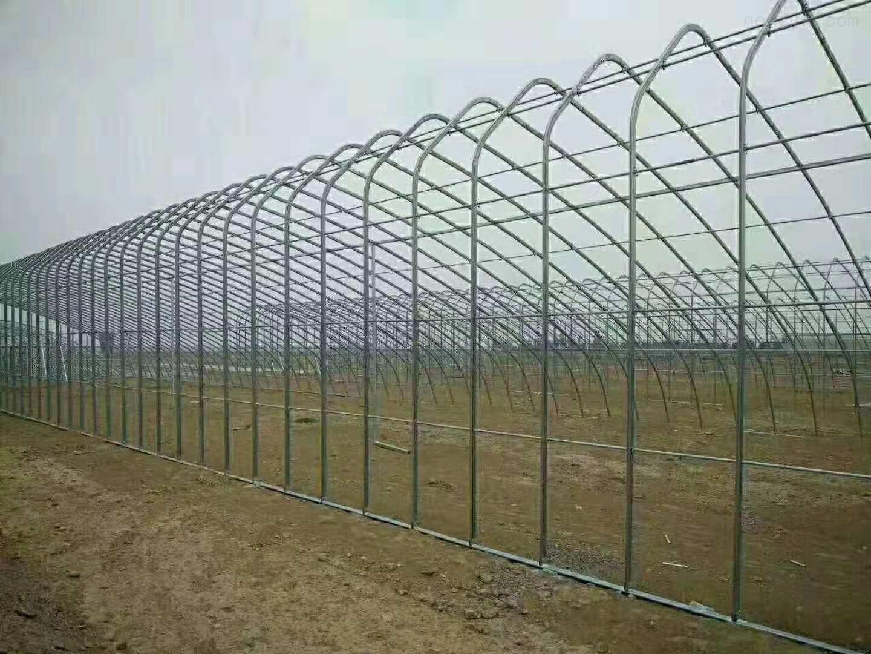 建椭圆管骨架蔬菜大棚的生产厂家