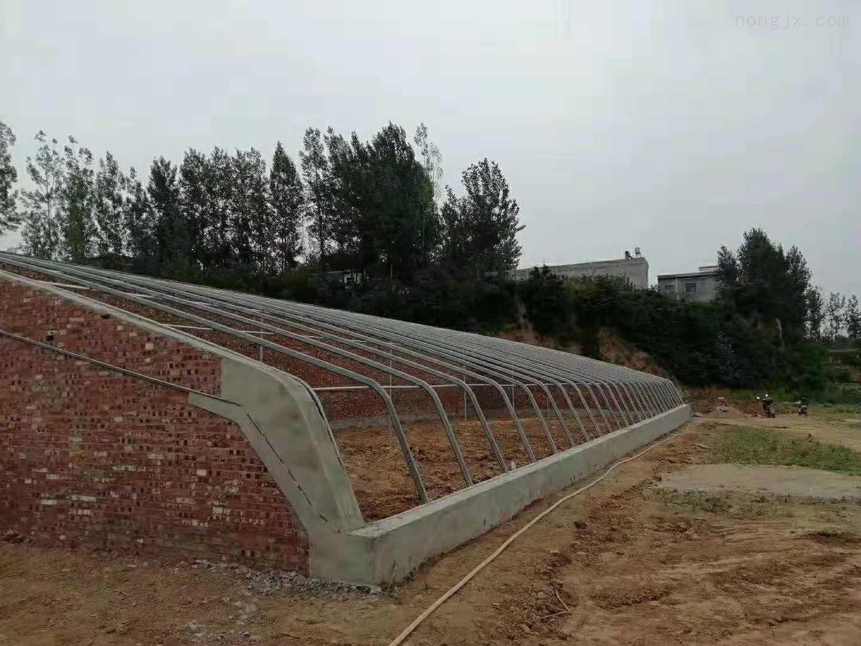 齐全-建椭圆管骨架蔬菜大棚的生产厂家