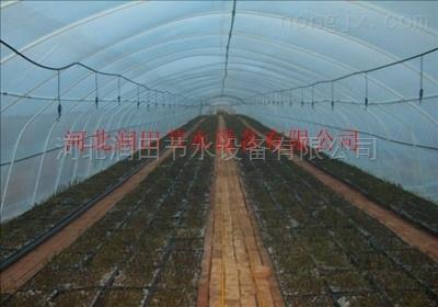 品牌厂家供应四川地区项目灌溉喷头