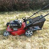 操作简单剪草机 汽油四冲程割草草坪机