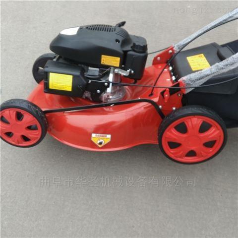 園林機械草坪機大馬力自走式剪草機