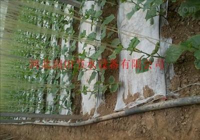 四川大安区滴灌带厂家直销滴灌带农用滴灌带