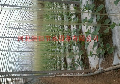 四川滴灌带厂家达州市滴灌带厂家