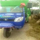 畜牧养殖电动抛料车 三轮撒料车