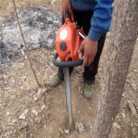 园林机械 贵州省断根挖树机 树苗移栽机