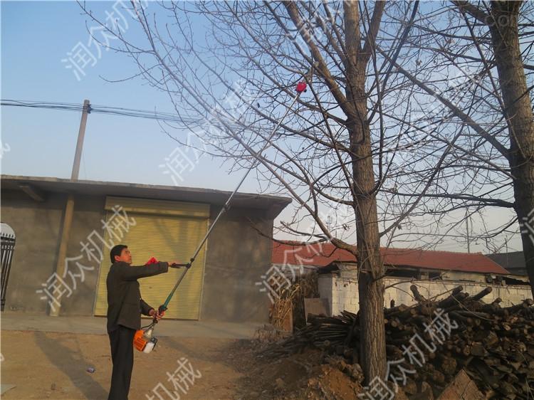 冬青修剪高枝綠籬機 樹枝修剪專用高枝鋸