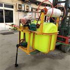 JX-DY农棉花专用打药机厂家 手推三轮喷雾消毒机