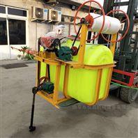 果园植保喷雾器 柴油风送式打药机价格
