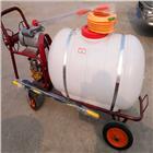 FX-DYJ多功能汽油打药机 果园手推式喷药机厂家