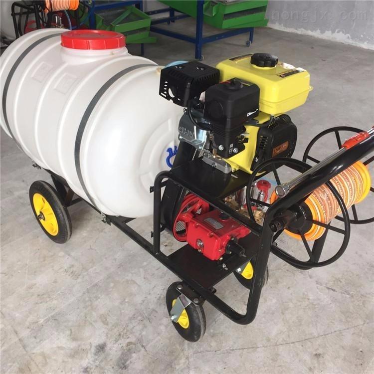 林果園殺蟲打藥機 便攜式汽油打藥噴霧機