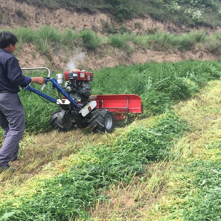 养殖牧草割草机厂家直销 芝麻割倒机